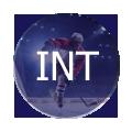 Щитки хоккейные юниорские (INT)