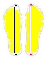 razmer-nogi